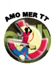 amo_tt